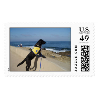 La Jolla Cove Stamps