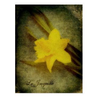 La Jonquille Postcard
