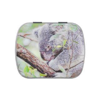 la koala pintada remolina la versión SM c.jpg Jarrones De Dulces