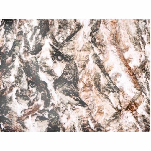 La lava invertida corteza del roble tiene gusto de fotoescultura vertical