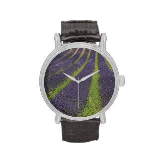 La lavanda púrpura coloca cerca de Sault Relojes De Pulsera