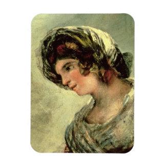 La lechera de Burdeos, c.1824 (aceite en lona) Imanes