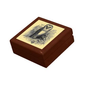 La lechuza común joyero cuadrado pequeño