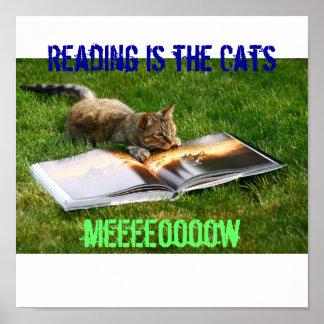 La lectura es el maullido de los gatos poster