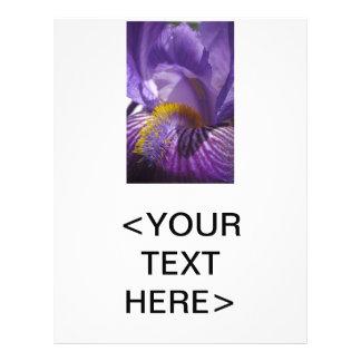 """La lengua de los iris folleto 8.5"""" x 11"""""""