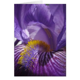 La lengua de los iris tarjeta