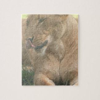 La leona con la lengua hacia fuera desconcierta puzzles