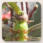 La libélula observa el práctico de costa del corch posavasos