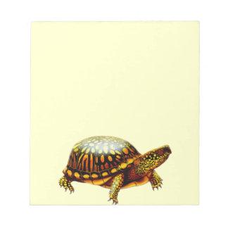 La libreta de la tortuga de caja bloc de notas