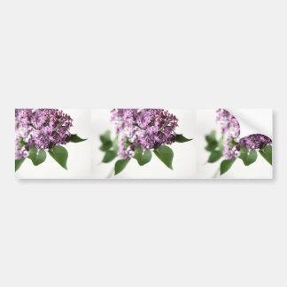La lila florece belleza de la fragancia de la pegatina para coche