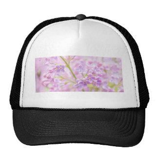 La lila florece la niebla gorro de camionero