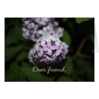La lila florece la tarjeta