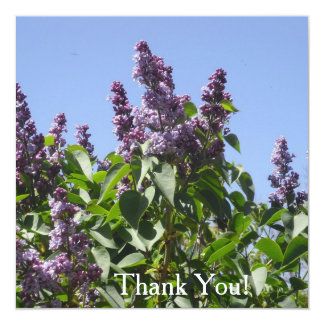"La lila púrpura le agradece las tarjetas invitación 5.25"" x 5.25"""