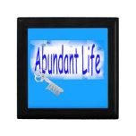 La llave a la vida abundante v2 (Juan 10: 10) Caja De Regalo