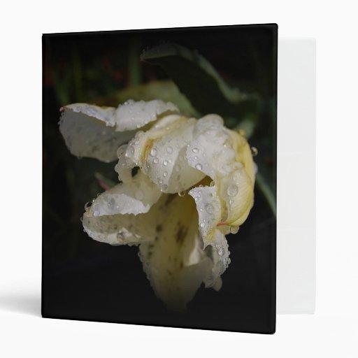 La lluvia besó la carpeta de Avery del tulipán