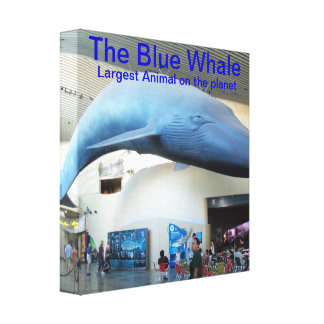 La lona de la pared de la ballena azul impresión en lona