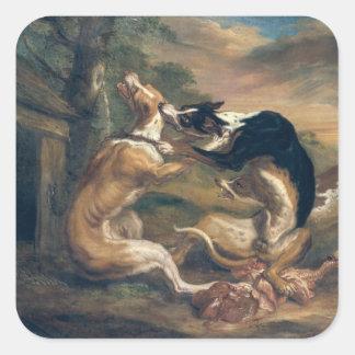 La lucha de perro, 1678 pegatina cuadrada