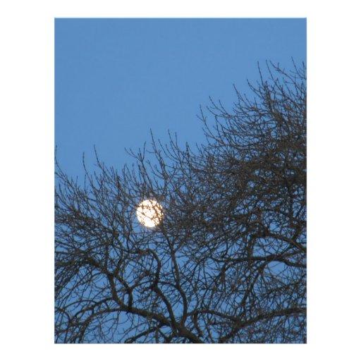 La luna flyer a todo color
