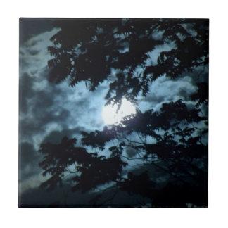 La luna ilumina la noche detrás de ramas de árbol azulejo cuadrado pequeño