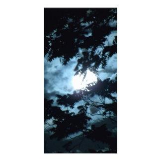 La luna ilumina la noche detrás de ramas de árbol tarjeta fotografica