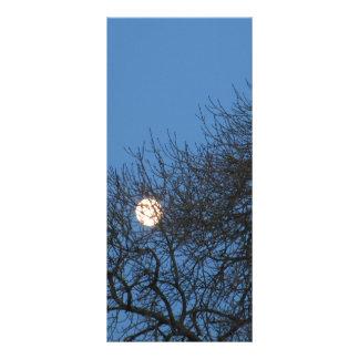 La luna lonas personalizadas