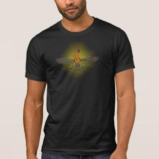 La luz destruida de los hombres de la camisa de