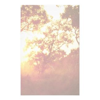 La luz pasada de Sun, en niebla y árboles, Austral Papeleria De Diseño