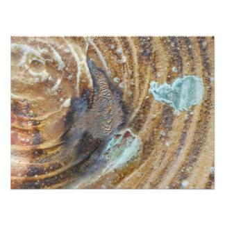 la madera abstracta 16x20 encendió de cerámica con fotografía