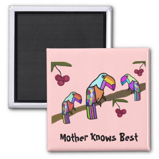 La madre de Toucan sabe mejor Imán De Frigorífico