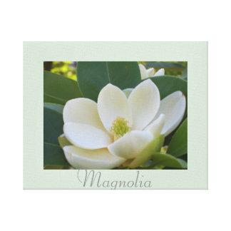 La magnolia blanca florece fotografía de la lienzo envuelto para galerías