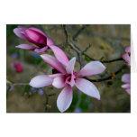 La magnolia florece Notecard Tarjeta