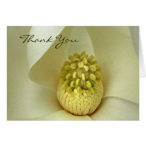 La magnolia meridional le agradece las tarjetas de
