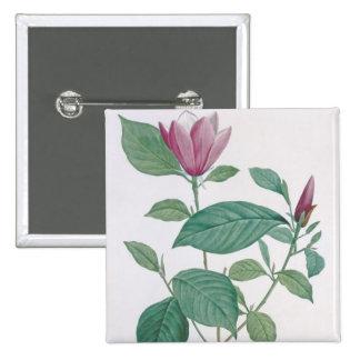 La magnolia se decolora, grabado por Legrand (colo Pin