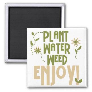 La mala hierba del agua de la planta goza de las c imán de frigorífico