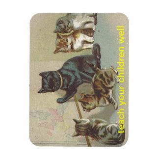 la mamá de los gatitos del gato enseña a sus niños imán