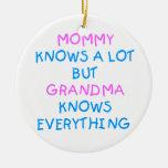 La mamá sabe mucho pero la abuela sabe todo adornos de navidad