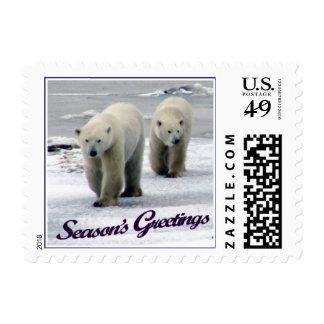 La mamá y Cub del oso polar de los saludos de la Sello