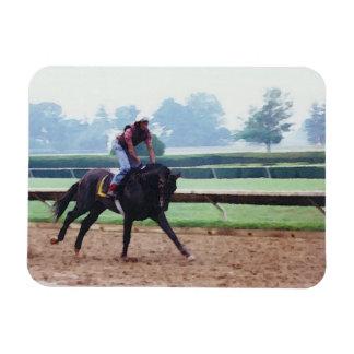 La mañana resuelve - el imán del caballo de raza