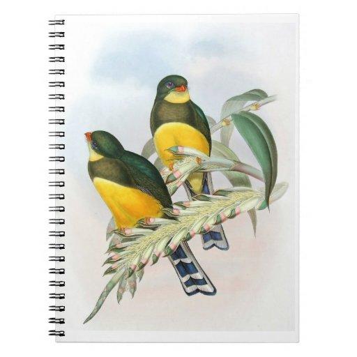 La mano del vintage bosquejó el cuaderno tropical