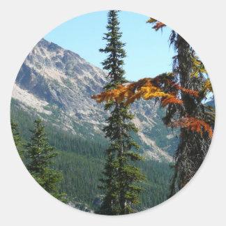 La maravilla de la naturaleza pegatina redonda