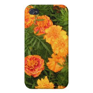 La maravilla florece la caja del iPhone 4 iPhone 4 Protector