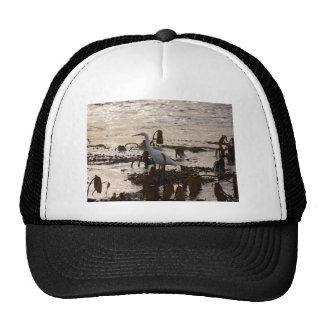 La marea reúne el Egret blanco Gorras De Camionero