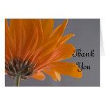 La margarita anaranjada en dama de honor gris del tarjeta de felicitación