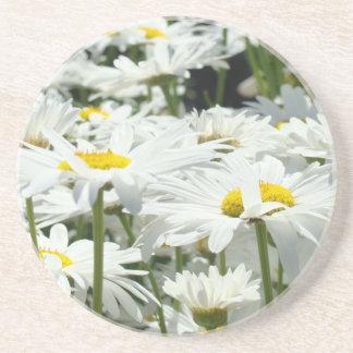 La margarita blanca de la piedra arenisca de los p posavasos personalizados