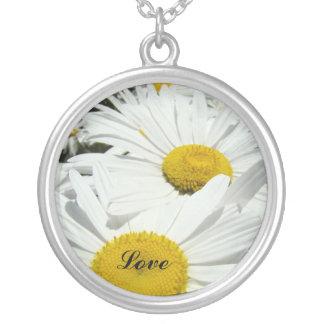 La margarita blanca del collar del amor florece