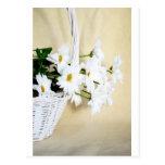 La margarita florece las flores y cesta de mimbre postal