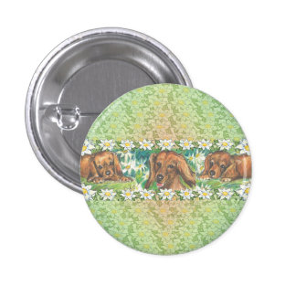 La margarita persigue perritos del Dachshund Pins