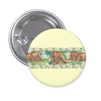 La margarita persigue perritos del Dachshund Pin