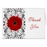 La margarita roja del Gerbera floral le agradece c Felicitaciones