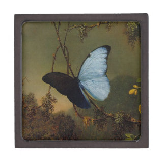 La mariposa azul de Morpho del vintage tejó la caj Caja De Recuerdo De Calidad